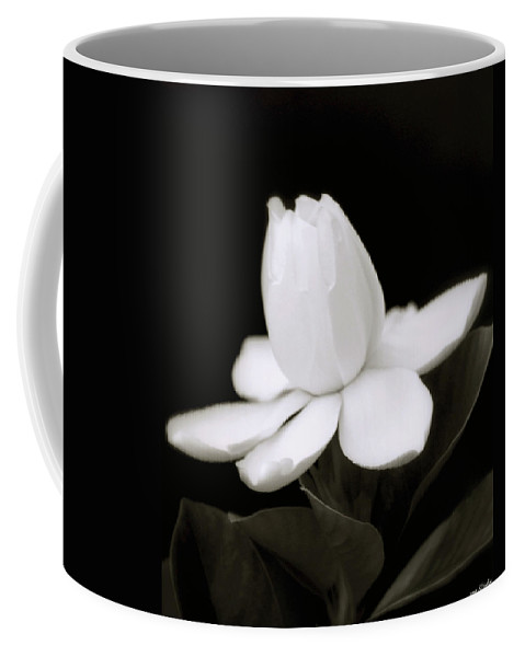 Flower Coffee Mug featuring the photograph Summer Fragrance by Holly Kempe