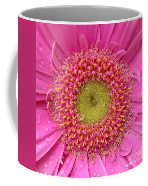 Pink Flower Coffee Mug featuring the photograph Summer Glory by Carol Groenen