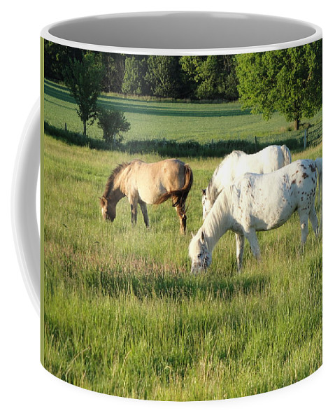 Pony Coffee Mug featuring the photograph Summer Grazing by Susan Baker