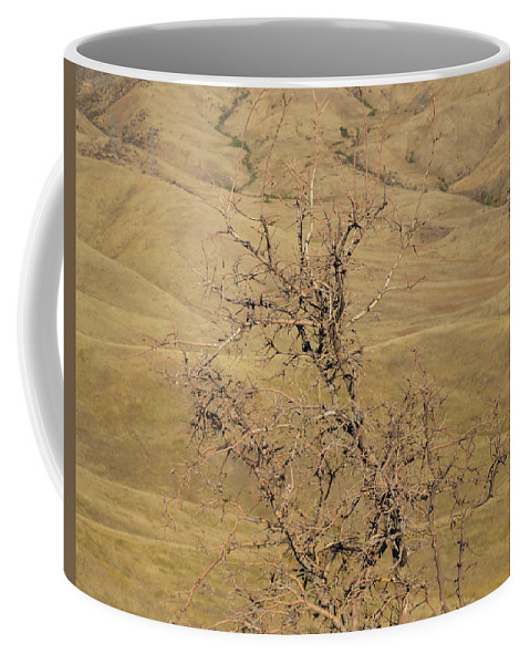 Idaho Coffee Mug featuring the photograph Summer Idaho by Dart and Suze Humeston