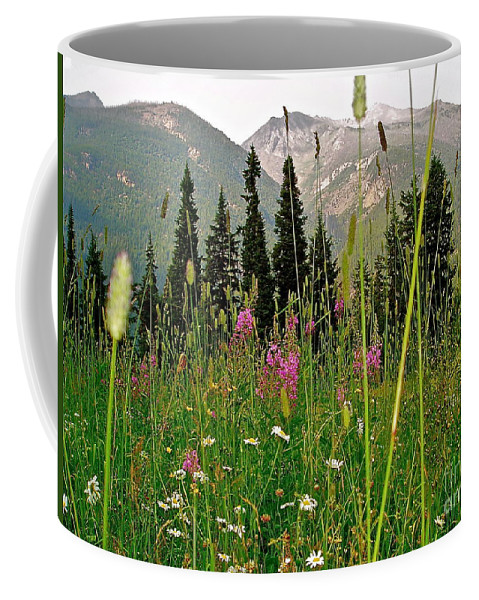 Landscape Coffee Mug featuring the photograph Summer In The Mountains by E Robert Dee