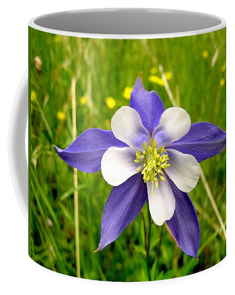Plant Coffee Mug featuring the photograph Summer In The Rockies by Carol Milisen