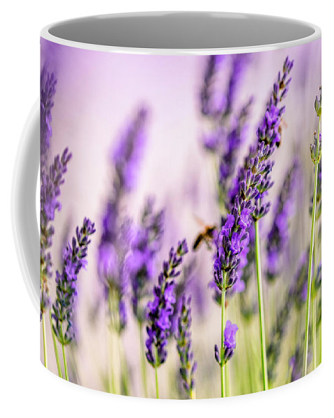 Lavender Coffee Mug featuring the photograph Summer Lavender by Nailia Schwarz