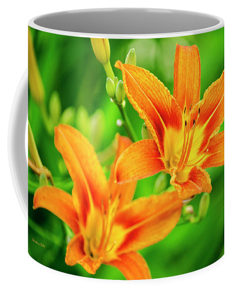 Lilies Coffee Mug featuring the photograph Summer Lilies by Christina Rollo