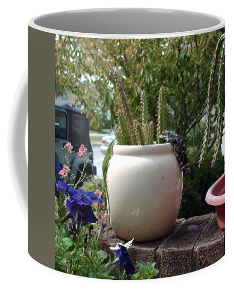Lizard Coffee Mug featuring the photograph Summer Romance by Patricia Buchanan