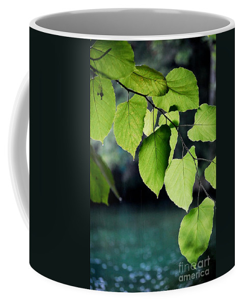 Summer Showers Coffee Mug featuring the photograph Summer Showers by Robert Meanor