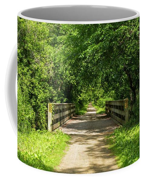 Trail Coffee Mug featuring the photograph Summer Trail Scene 4 A by John Brueske