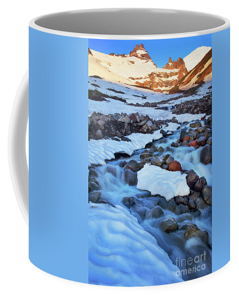 America Coffee Mug featuring the photograph Summerland Creek by Inge Johnsson