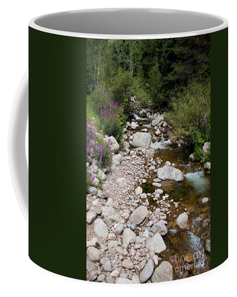 Stream Coffee Mug featuring the photograph Summertime by Madeline Ellis
