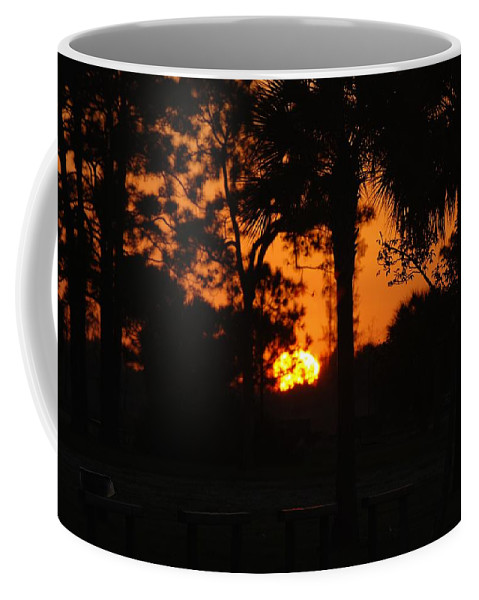 Nature Coffee Mug featuring the photograph Sun Ball by Rob Hans