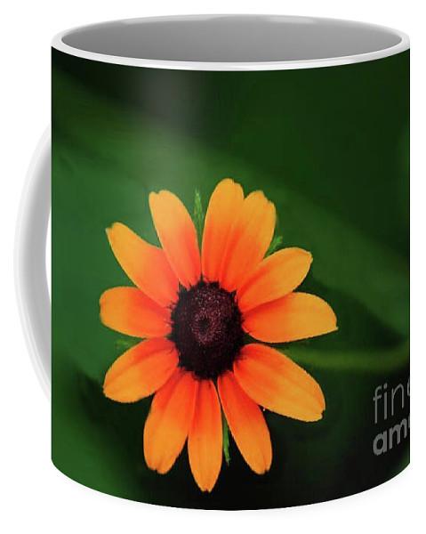Sun Flower Greeting Cards Coffee Mug featuring the photograph Sun Dial by Kim Henderson