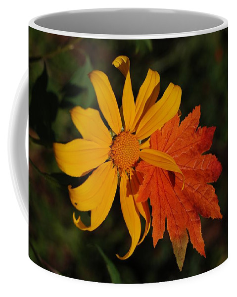 Pop Art Coffee Mug featuring the photograph Sun Flower And Leaf by Rob Hans