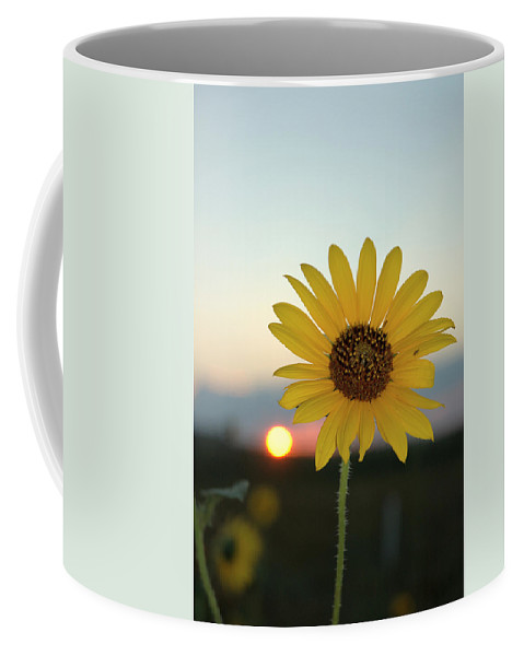Sunset Coffee Mug featuring the photograph Sun Flower At Sunset by Jerry McElroy