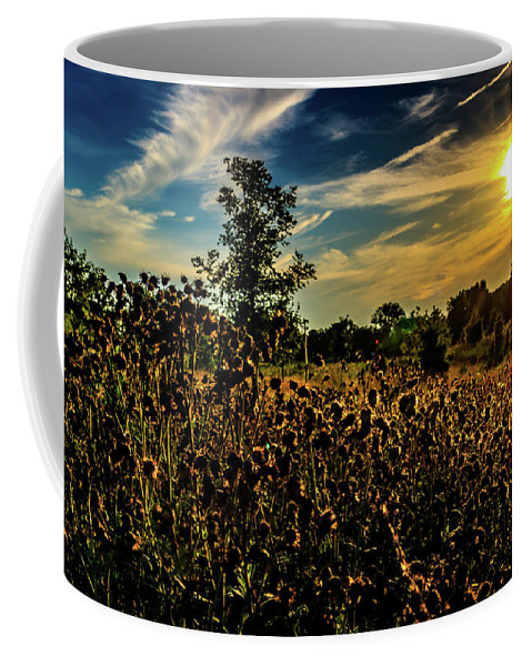 Landscape Coffee Mug featuring the photograph Sun Setting At Valley Forge by Howard Roberts