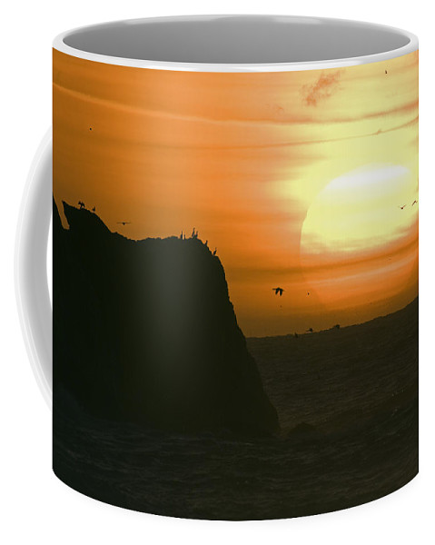 Sunsets Coffee Mug featuring the photograph Sun Setting With Flying Birds by Rich Reid