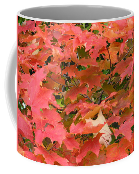 Leaves Coffee Mug featuring the photograph Sunburst by Kelly Mezzapelle