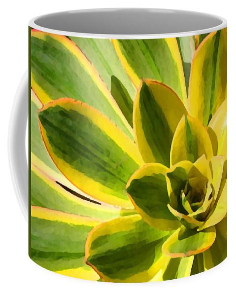 Landscape Coffee Mug featuring the photograph Sunburst Succulent Close-up 2 by Amy Vangsgard