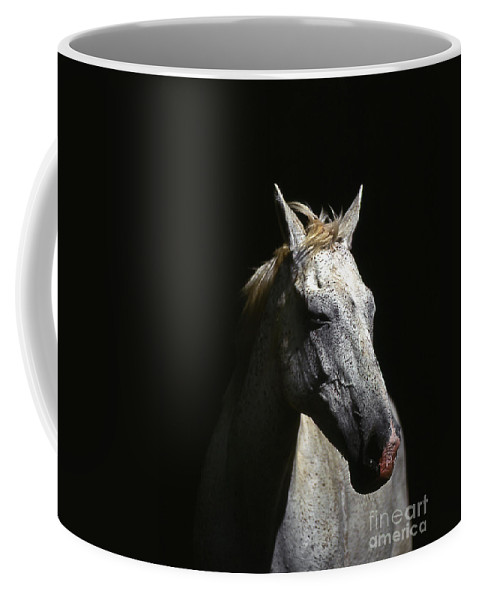 Horse Coffee Mug featuring the photograph Sundance by Jim Cazel