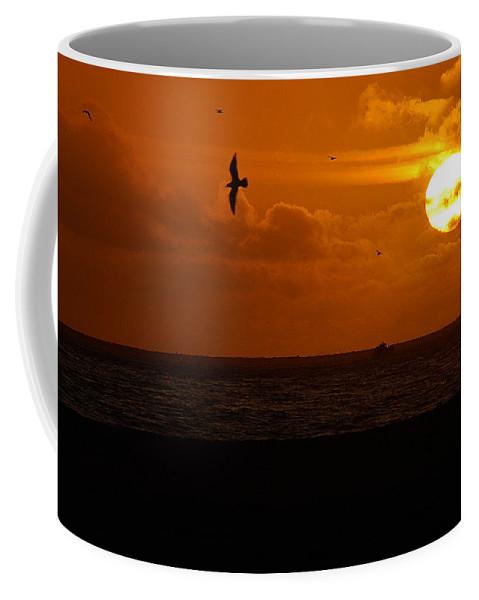 Clay Coffee Mug featuring the photograph Sundown Flight by Clayton Bruster