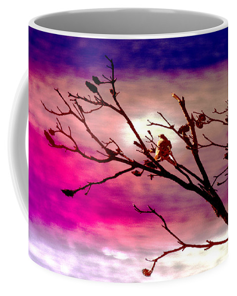 Landscape Coffee Mug featuring the photograph Sundown by Holly Kempe