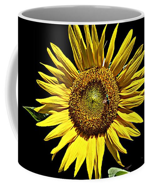 Flower Coffee Mug featuring the photograph Sunflower by Bob Johnson