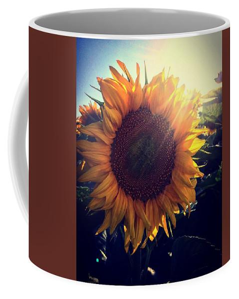 Sunflower Sun Colors Coffee Mug featuring the photograph Sunflower by Nikola Radak
