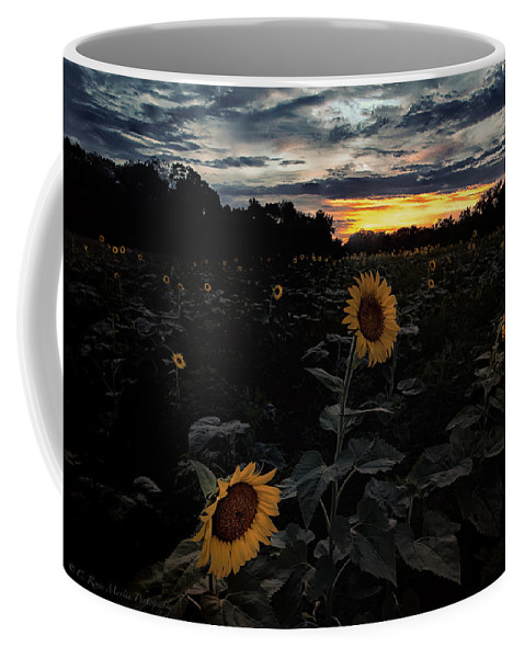 Sunflower Coffee Mug featuring the photograph Sunflower Sunset by C Renee Martin