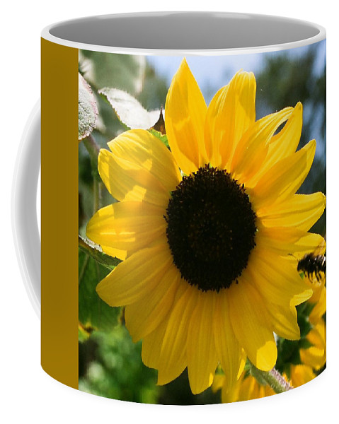 Flower Coffee Mug featuring the photograph Sunflower with Bee by Dean Triolo