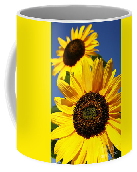 Sunflowers Coffee Mug featuring the photograph Sunflowers by Gaspar Avila