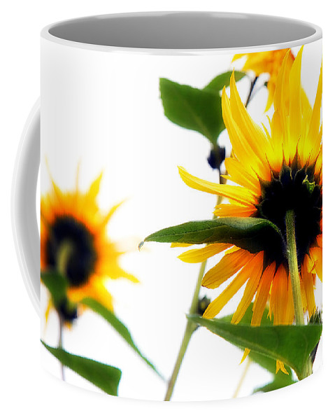 Sunflowers Coffee Mug featuring the photograph Sunflowers by Mal Bray