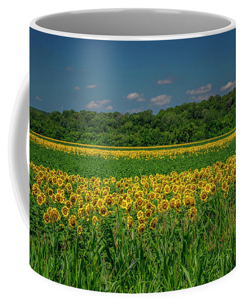 Landscape Coffee Mug featuring the photograph Sunflowers Weldon Spring Mo_dsc9830_16 by Greg Kluempers