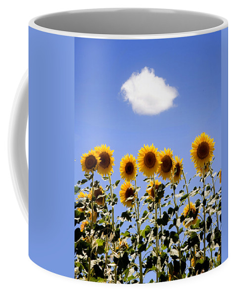 Sunflowers Coffee Mug featuring the photograph Sunflowers With A Cloud by Mal Bray