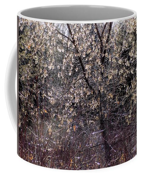 Sunlight Coffee Mug featuring the photograph Sunlight Magic by William Tasker