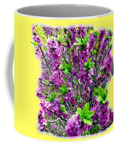 Sunlit Daphne Coffee Mug featuring the digital art Sunlit Daphne by Will Borden