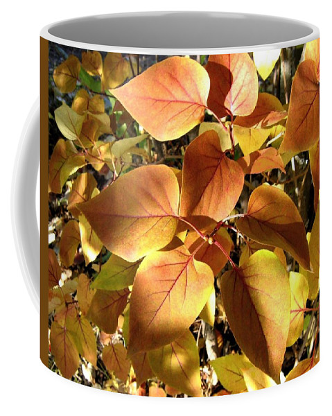 Lilac Leaves Coffee Mug featuring the photograph Sunlit Lilac Leaves by Will Borden