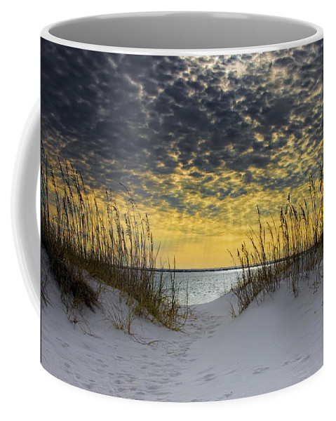Coast Coffee Mug featuring the photograph Sunlit Passage by Janet Fikar