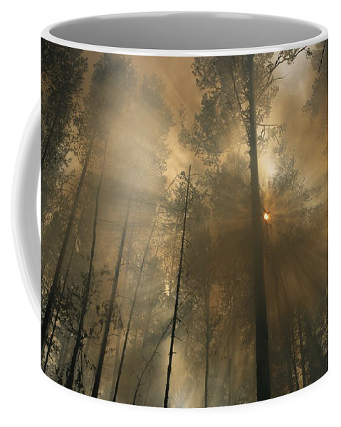 Natural Forces And Phenomena Coffee Mug featuring the photograph Sunlit Smoke Whispers The Firefighters by Mark Thiessen