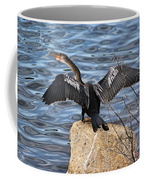 Darter Coffee Mug featuring the photograph Sunning Darter by Lisa Clark