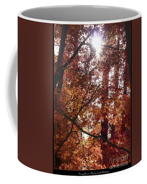 Fall Coffee Mug featuring the photograph Sunny Autumn Day Poster by Carol Groenen