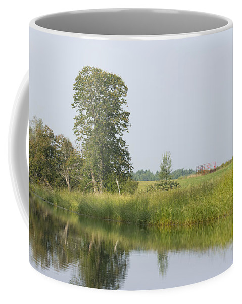 Landscape Coffee Mug featuring the photograph Sunny Morning by Jan Mulherin