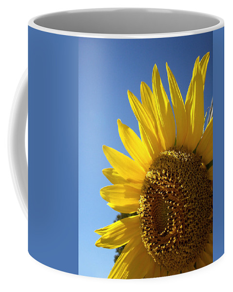 Sunflower Coffee Mug featuring the photograph Sunny Skies by Donna Blackhall