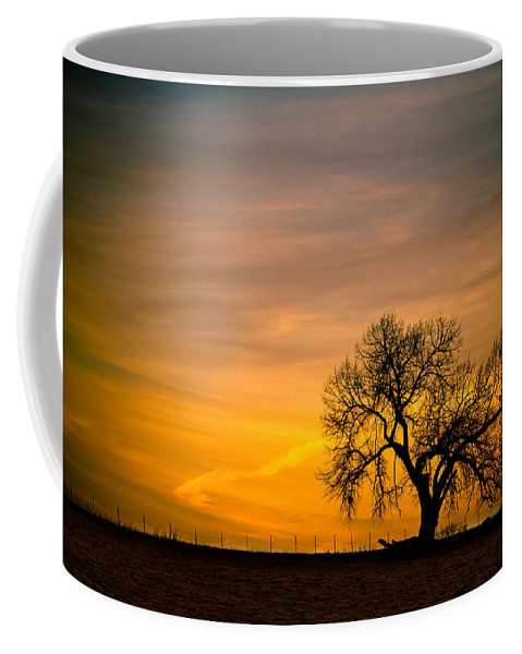 canvas Print Coffee Mug featuring the photograph Sunrise 1-27-2011 by James BO Insogna