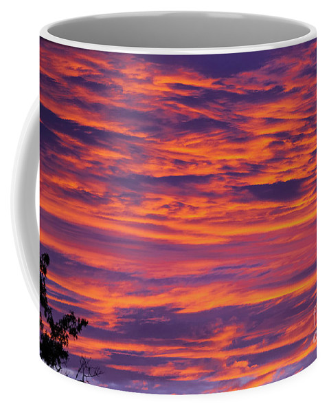 Sunrise Coffee Mug featuring the photograph Sunrise #2 by Kevin Gladwell