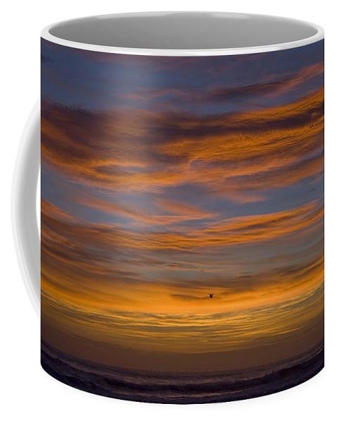 Sun Sunrise Cloud Clouds Morning Early Bright Orange Bird Flight Fly Flying Blue Ocean Water Waves Coffee Mug featuring the photograph Sunrise by Andrei Shliakhau