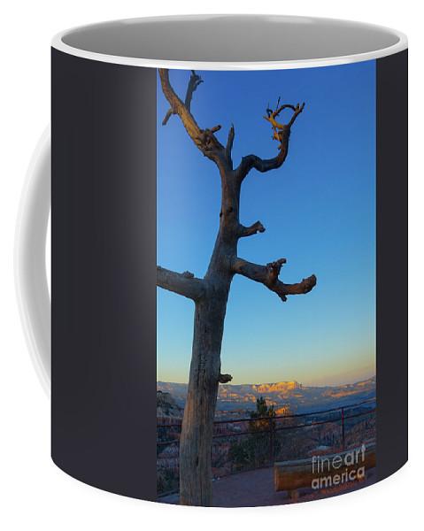 Arizona Coffee Mug featuring the photograph Sunrise Bryce Canyon by Wendy Fielding