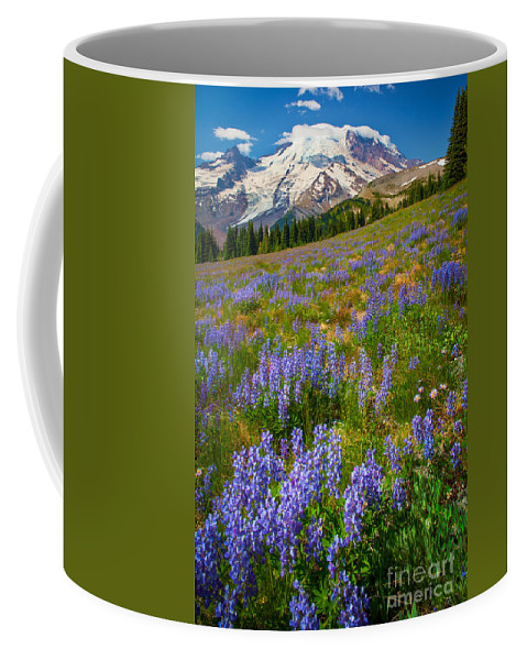 America Coffee Mug featuring the photograph Sunrise Meadow by Inge Johnsson