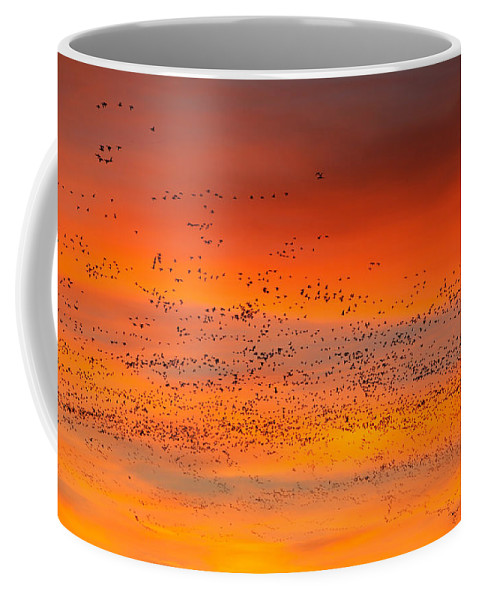 Migration Coffee Mug featuring the photograph Sunrise Migration by Randall Ingalls