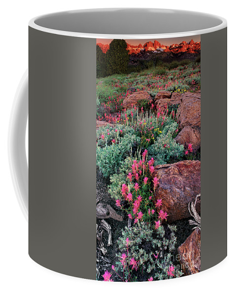 Dave Welling Coffee Mug featuring the photograph Sunrise On The Minarets Eastern Sierras California by Dave Welling