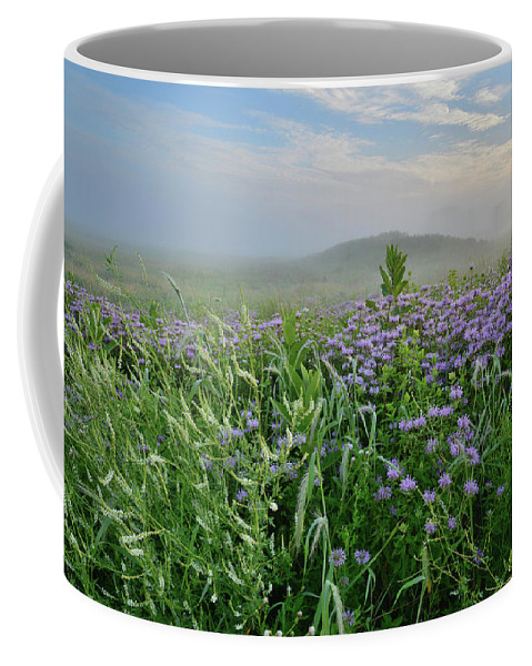 Black Eyed Susan Coffee Mug featuring the photograph Sunrise Over Foggy Glacial Park Prairie by Ray Mathis