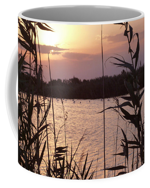 Almeria Coffee Mug featuring the photograph Sunset And Water by Laura Greco